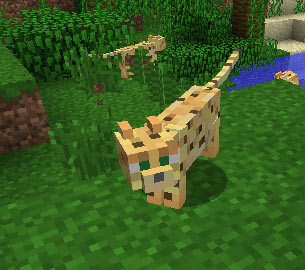 http://minecraft.org.pl/images/stories/Ocelot1-minecraft.jpg